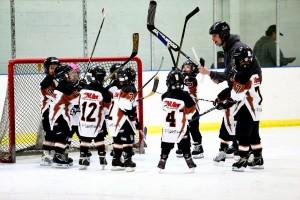 3-D Sponsors Hockey Team